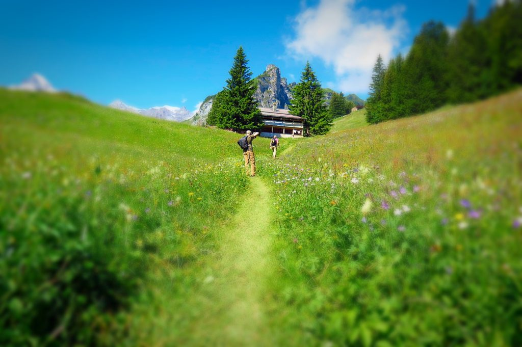 Hiking the Swiss Alps